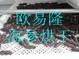 海参热泵烘干机 海参冷风干燥机 低温干燥技术 海参干燥加工设备厂家