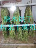 欧易隆10P热泵高温辣木叶烘干设备