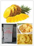 热泵冷风菠萝烘干机 菠萝冷风干燥机 菠萝干燥加工设备 菠萝干燥机厂家